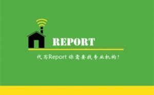 report代写服务简介