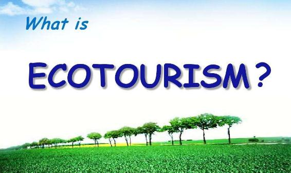 the importance of tourism market segmentation tourism essay Market segmentation in hospitality research: no longer a sequential process john t bowen william f harrah college of hotel administration, university of nevada, las vegas, usa explores development in market segmentation relating to hospitality and tourism research published between 1990 and 1998.